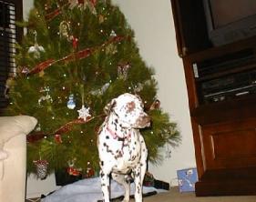 2002christmas