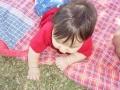 picnic-3.jpg